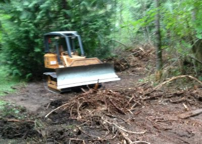 Clearing with Bulldozer  || Jim Agnew || Cascade Dozing