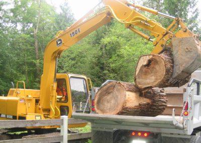 Cotton wood log removal  || Jim Agnew || Cascade Dozing